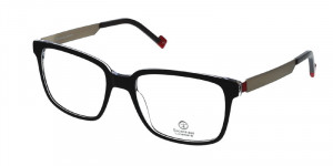 Lunettes Essilor homme TORINO 1402 grey silver